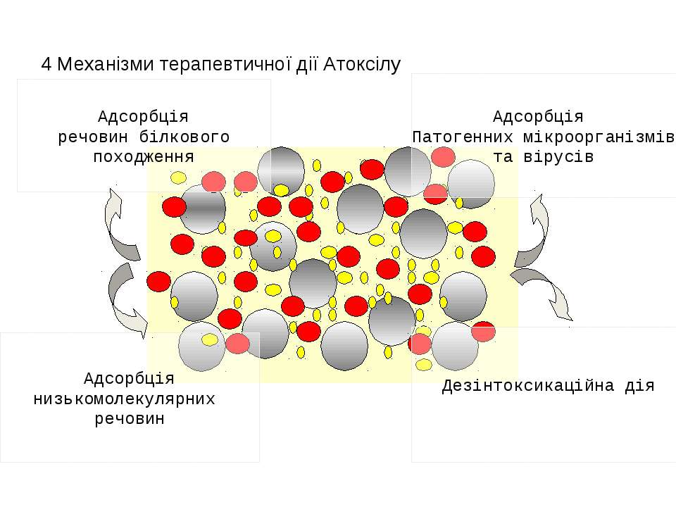 4 Механізми терапевтичної дії Атоксілу Адсорбція речовин білкового походження...
