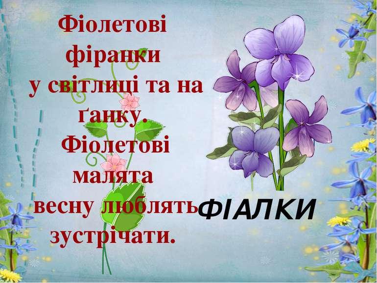Фіолетові фіранки у світлиці та на ґанку. Фіолетові малята весну люблять зуст...