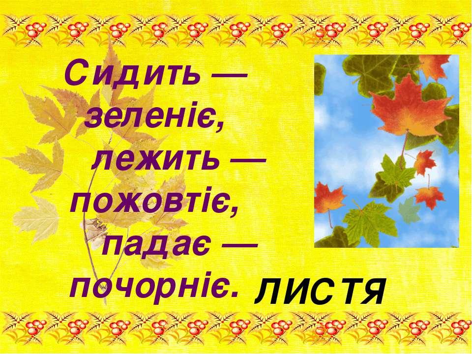 Сидить — зеленіє, лежить — пожовтіє, падає — почорніє. ЛИСТЯ