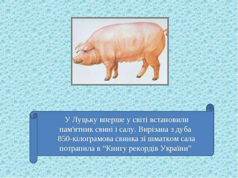 У Луцьку вперше у світі встановили пам'ятник свині і салу. Вирізана з дуба 85...