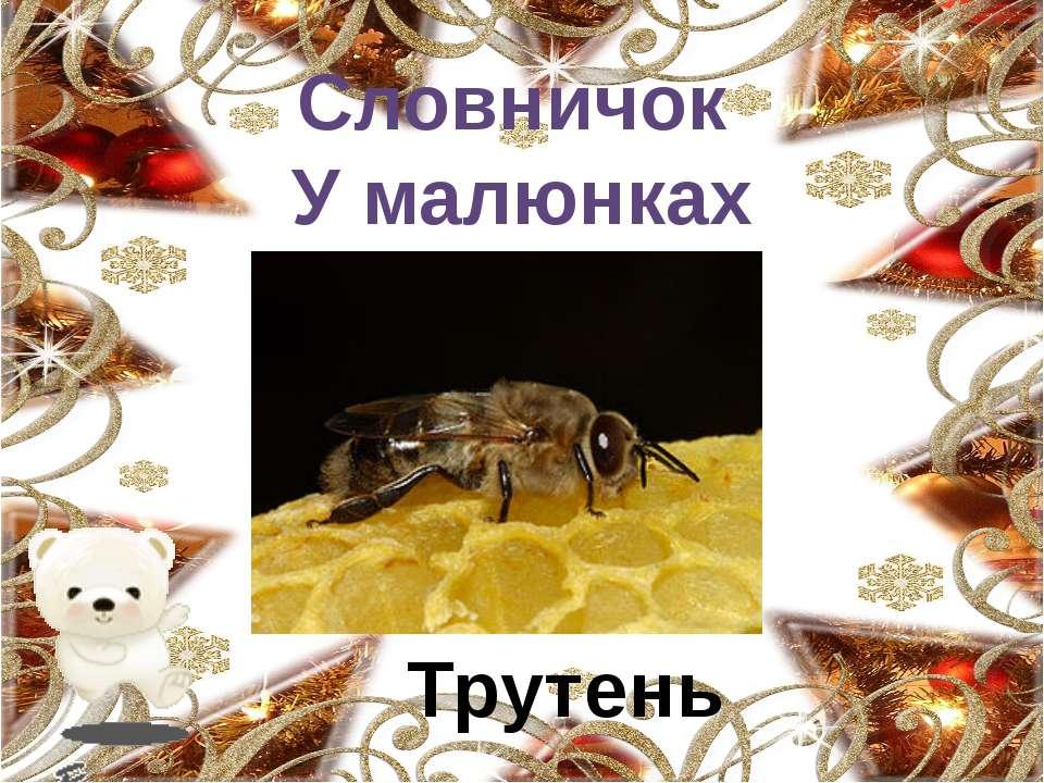 Хто як розмовляє? Озвучте тільки тих тварин, які використовують звук [у]