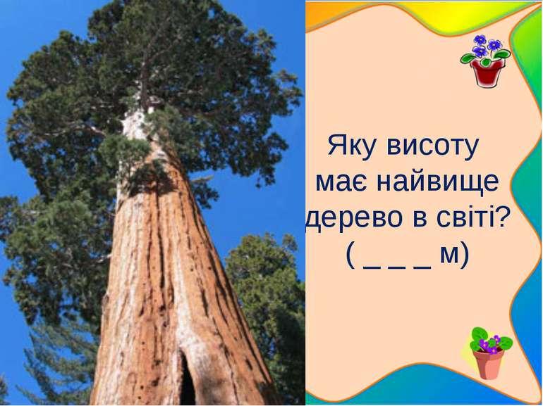 Яку висоту має найвище дерево в світі? ( _ _ _ м) 5 запитань, які стосуютьс...