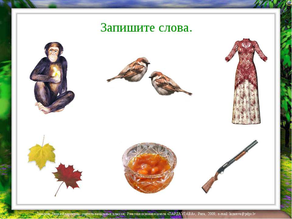 Запишите слова. Лазарева Лидия Андреевна, учитель начальных классов, Рижская ...