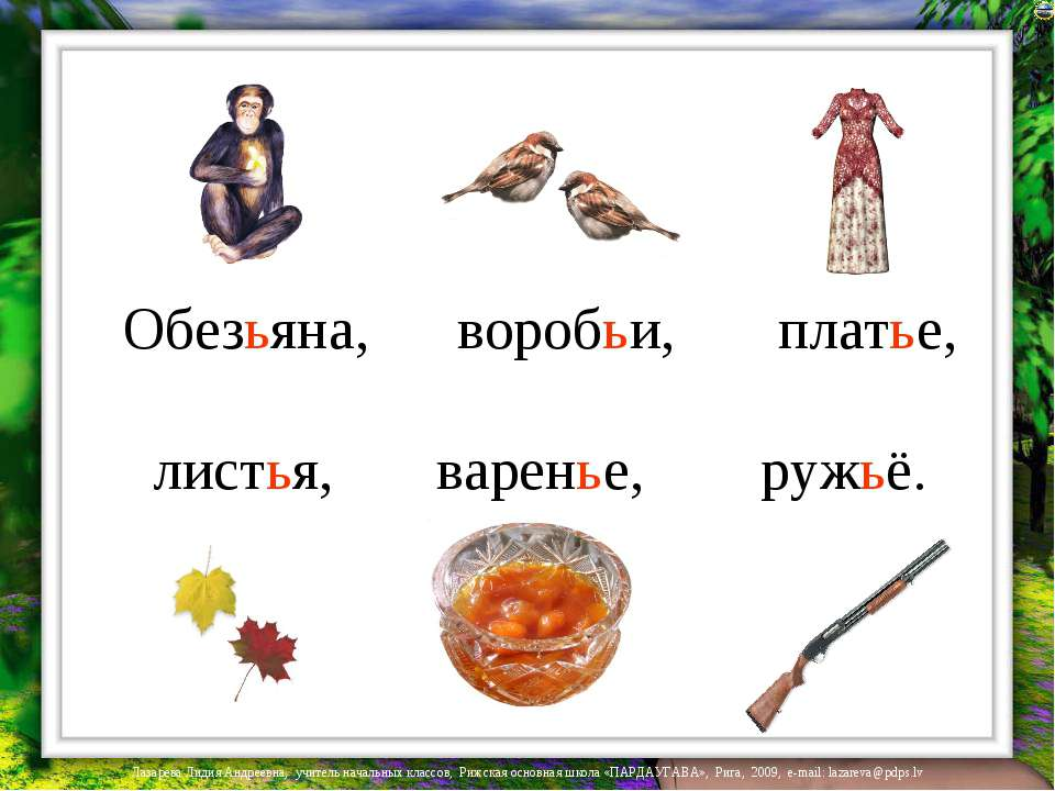 Обезьяна, воробьи, платье, листья, варенье, ружьё. Лазарева Лидия Андреевна, ...