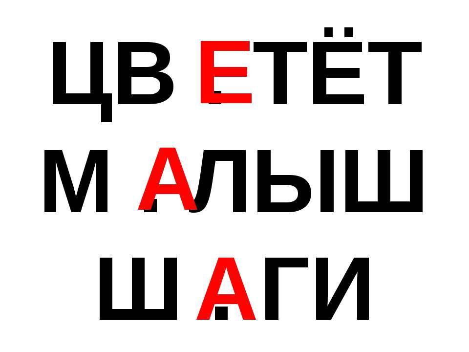 ЦВ . ТЁТ М . ЛЫШ Ш . ГИ Е А А