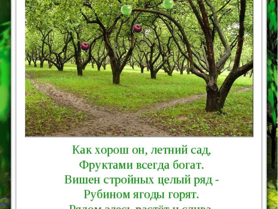 Как хорош он, летний сад, Фруктами всегда богат. Вишен стройных целый ряд - Р...