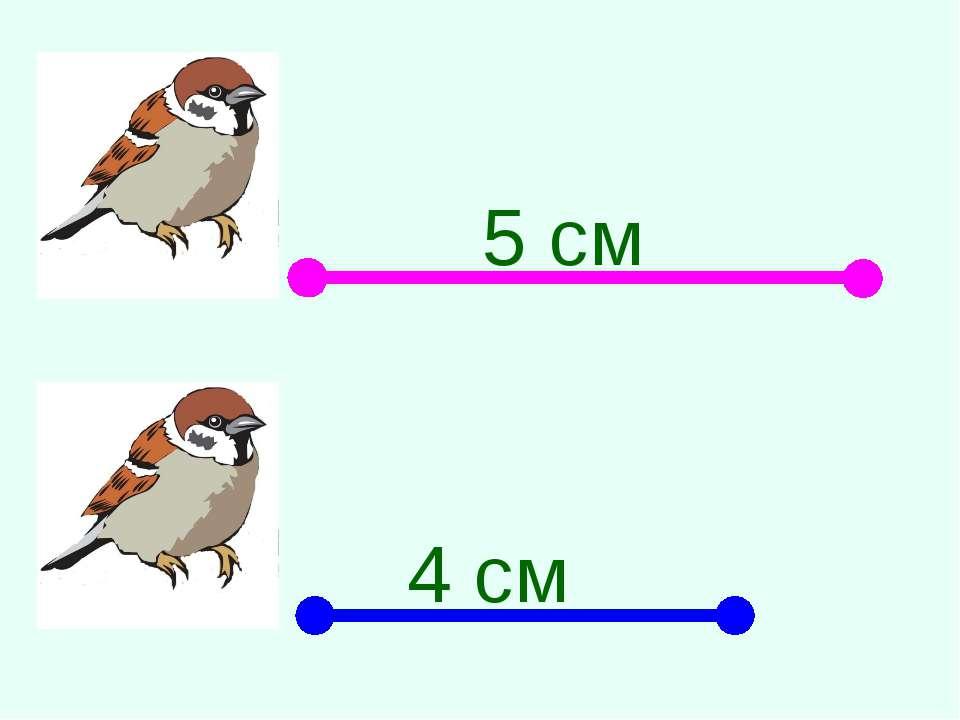 5 см 4 см