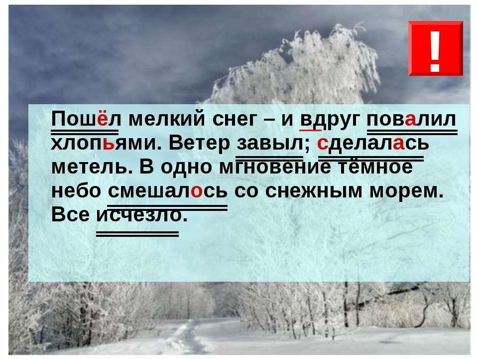 Пошёл мелкий снег – и вдруг повалил хлопьями. Ветер завыл; сделалась метель. ...
