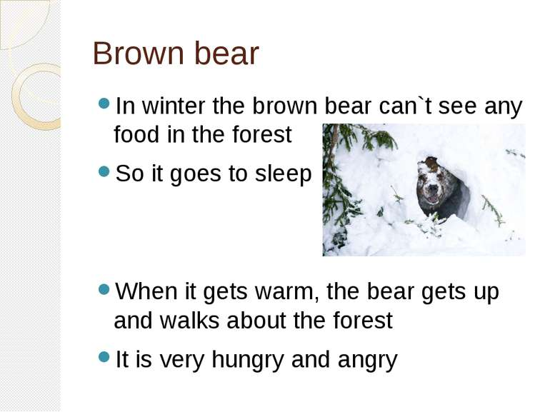 Brown bear In winter the brown bear can`t see any food in the forest So it go...