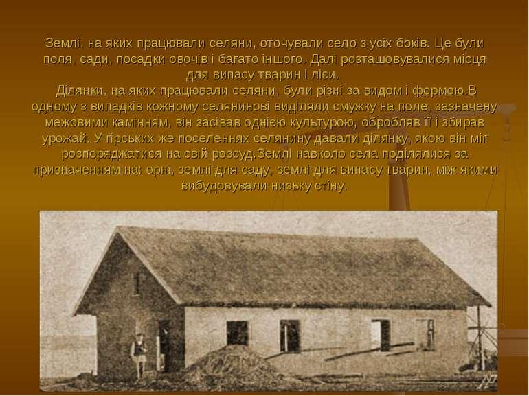 Землі, на яких працювали селяни, оточували село з усіх боків. Це були поля, с...