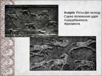 Асирія. Рельєфи палацу. Сцена полювання царя Ашшурбаніпала. Фрагменти.