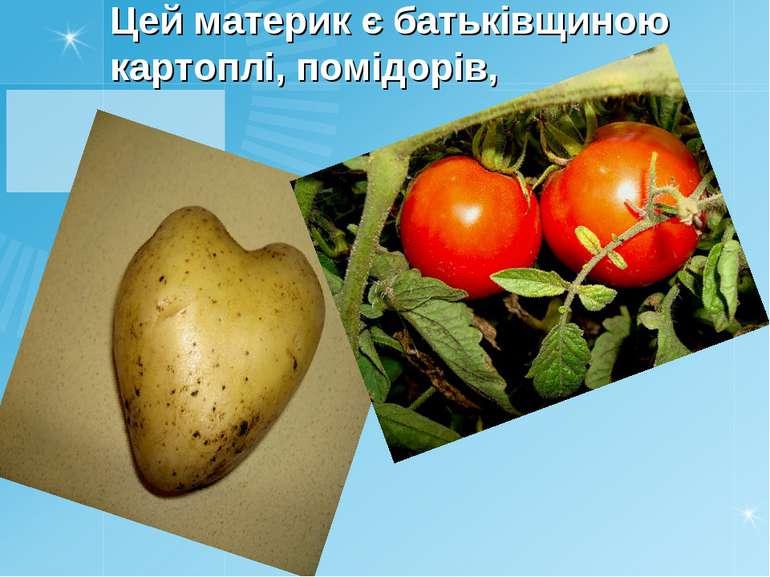 Цей материк є батькiвщиною картоплi, помiдорiв,