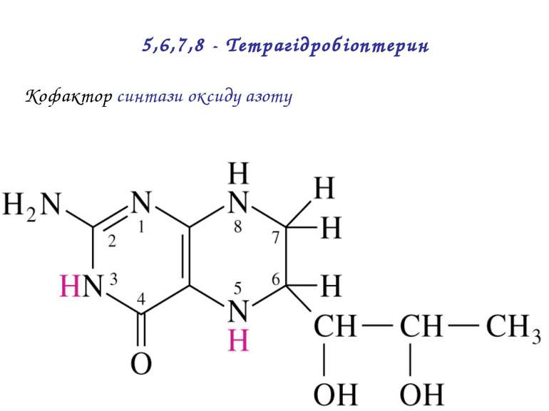 Кофактор синтази оксиду азоту 5,6,7,8 - Тетрагідробіоптерин