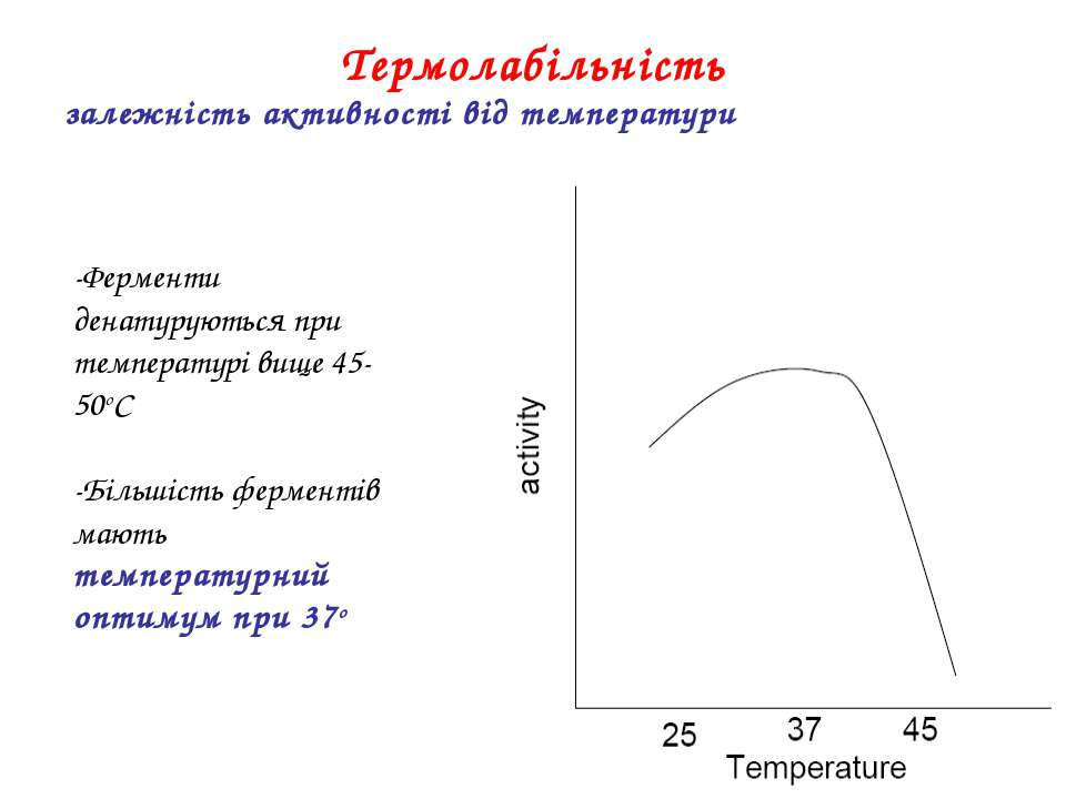 -Ферменти денатуруються при температурі вище 45-50oC -Більшість ферментів маю...
