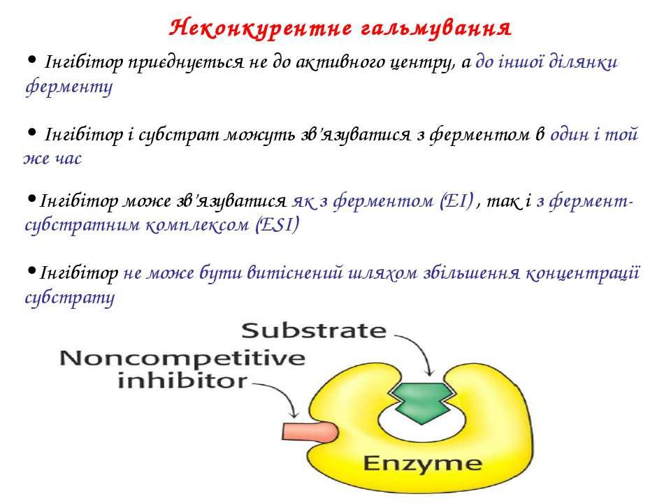 • Інгібітор приєднується не до активного центру, а до іншої ділянки ферменту ...
