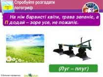 Спробуйте розгадати логогриф Розділ 2 § 5 На нім барвисті квіти, трава зелені...