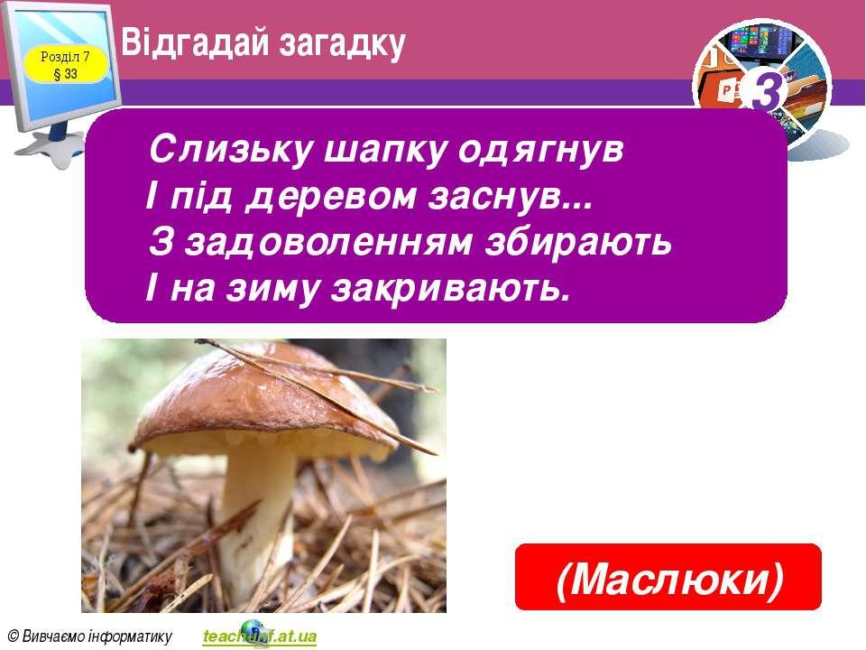 Відгадай загадку Розділ 7 § 33 Слизьку шапку одягнув І під деревом заснув... ...