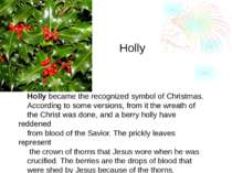 Holly became the recognized symbol of Christmas. According to some versions, ...