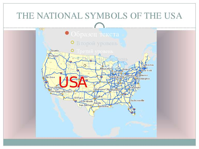THE NATIONAL SYMBOLS OF THE USA USA
