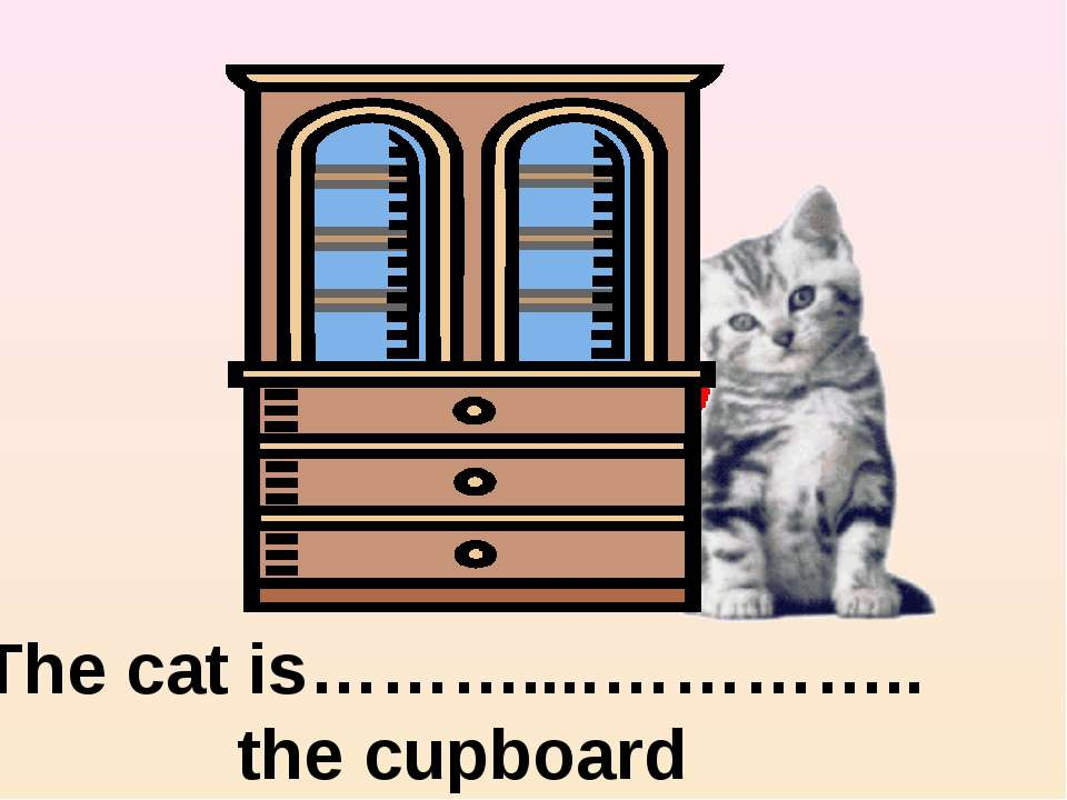 on the right of The cat is………....………….. the cupboard