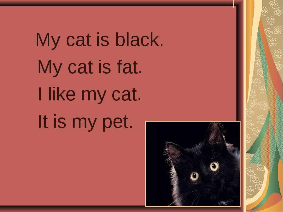 I My cat is black. My cat is fat. I like my cat. It is my pet.