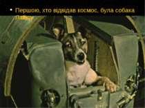 Першою, хто відвідав космос, була собака Лайка.