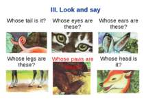 III. Look and say Whose paws are these? Whose tail is it? Whose eyes are thes...