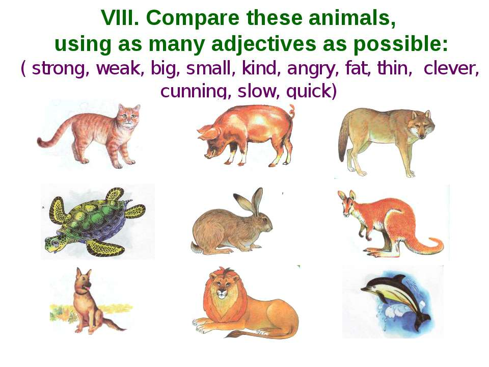 VIII. Compare these animals, using as many adjectives as possible: ( strong, ...