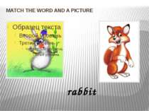 MATCH THE WORD AND A PICTURE rabbit