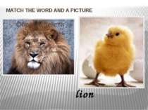 MATCH THE WORD AND A PICTURE lion