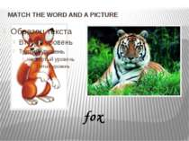 MATCH THE WORD AND A PICTURE fox