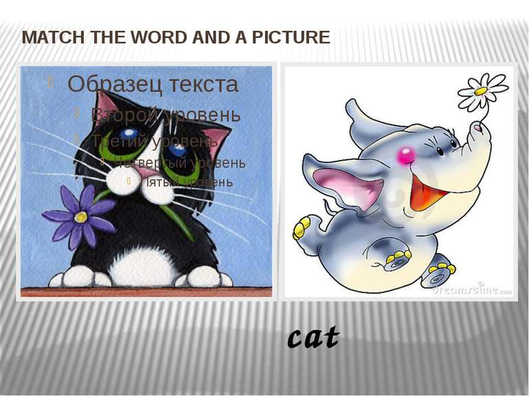 MATCH THE WORD AND A PICTURE cat