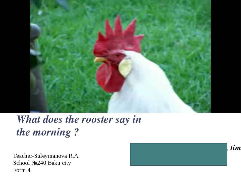 Good, morning! It is time, time to get up! What does the rooster say in the m...