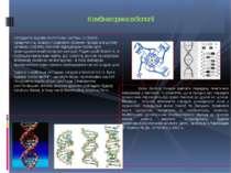 Складність будови біологічних систем, їх строга ієрархічність, взаємо поєднан...