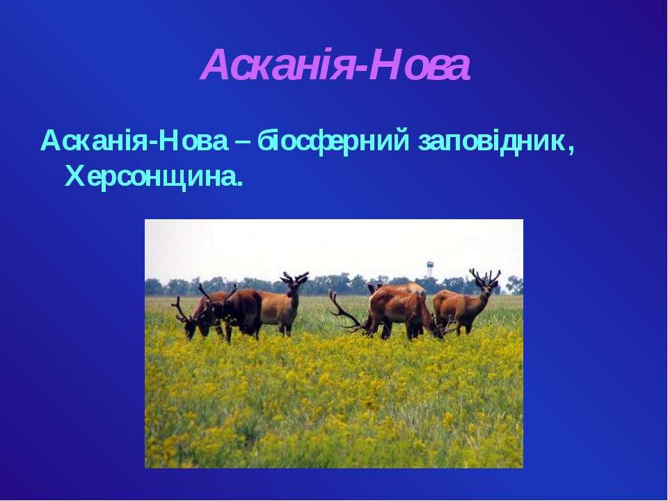Асканія-Нова Асканія-Нова – біосферний заповідник, Херсонщина.