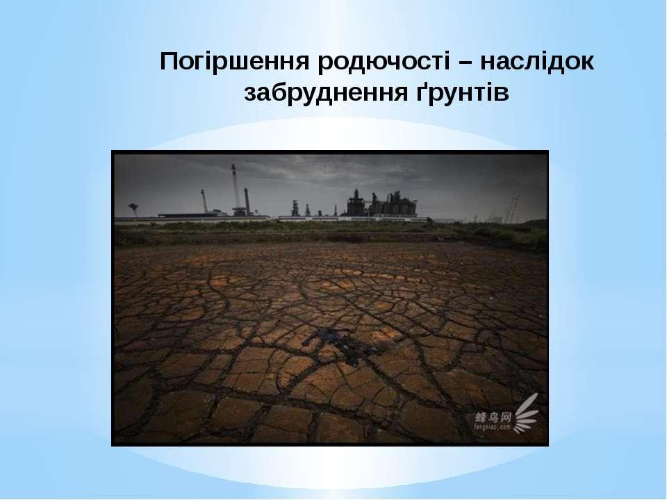 Погіршення родючості – наслідок забруднення ґрунтів Забруднені ґрунти втрачаю...