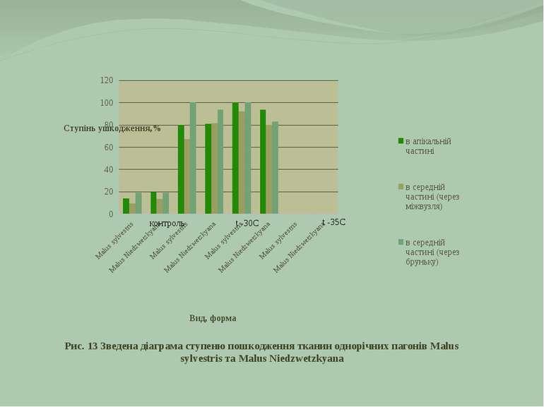 Рис. 13 Зведена діаграма ступеню пошкодження тканин однорічних пагонів Malus ...