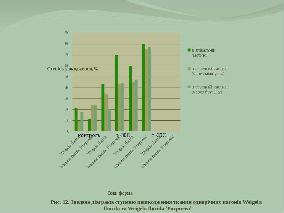 Рис. 12. Зведена діаграма ступеню пошкодження тканин однорічних пагонів Weige...