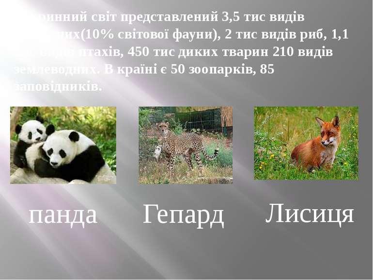 Тваринний світ представлений 3,5 тис видів хребетних(10% світової фауни), 2 т...