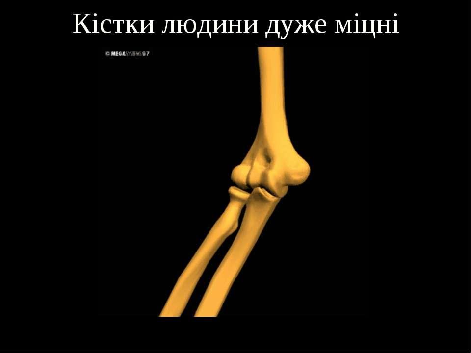 Кістки людини дуже міцні