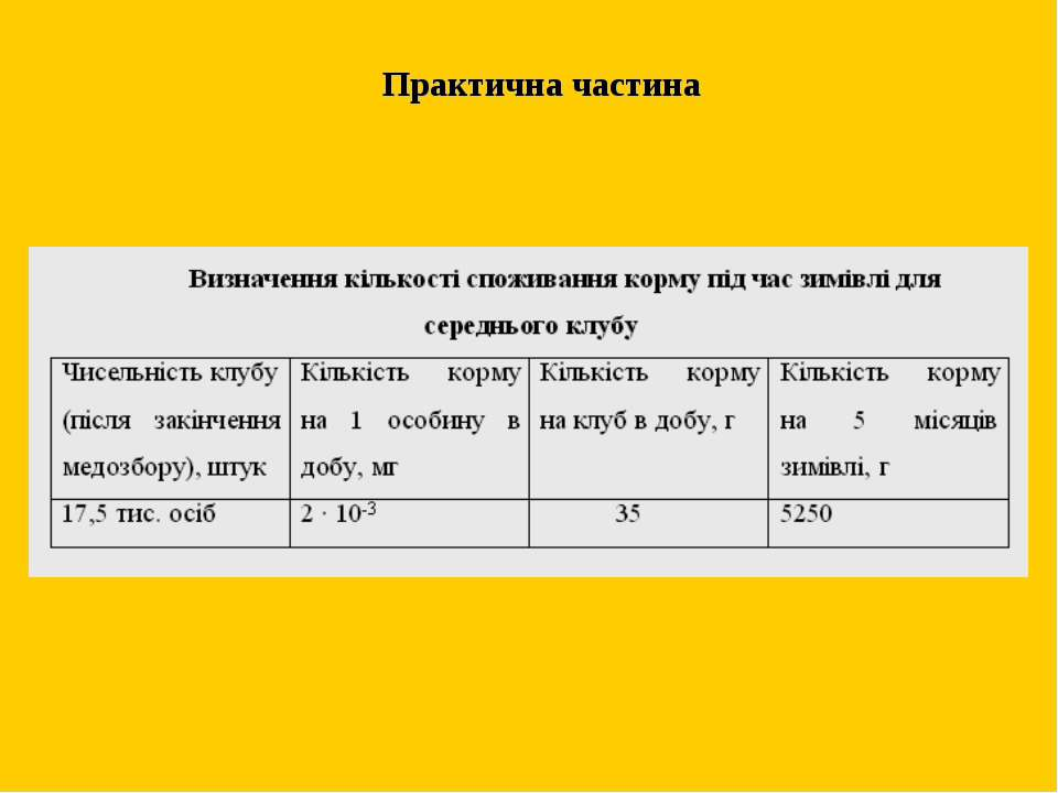 Практична частина м. Жтитомир 2011
