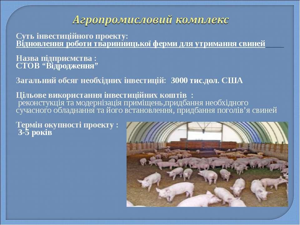 Суть інвестиційного проекту: Відновлення роботи тваринницької ферми для утрим...