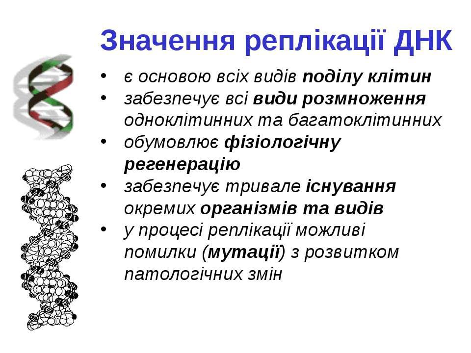 Значення реплікації ДНК є основою всіх видів поділу клітин забезпечує всі вид...