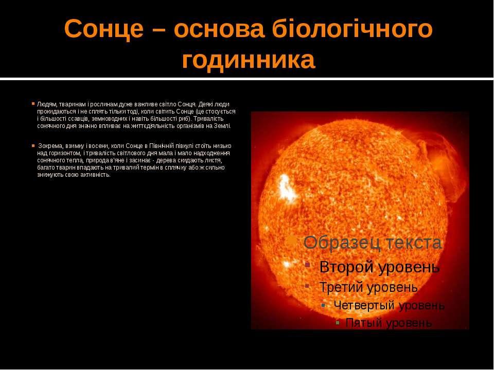 Сонце – основа біологічного годинника Людям, тваринам і рослинам дуже важливе...