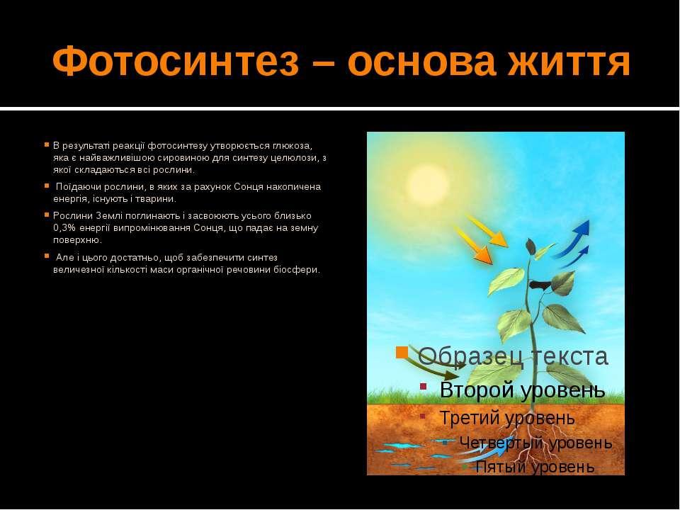 Фотосинтез – основа життя В результаті реакції фотосинтезу утворюється глюкоз...