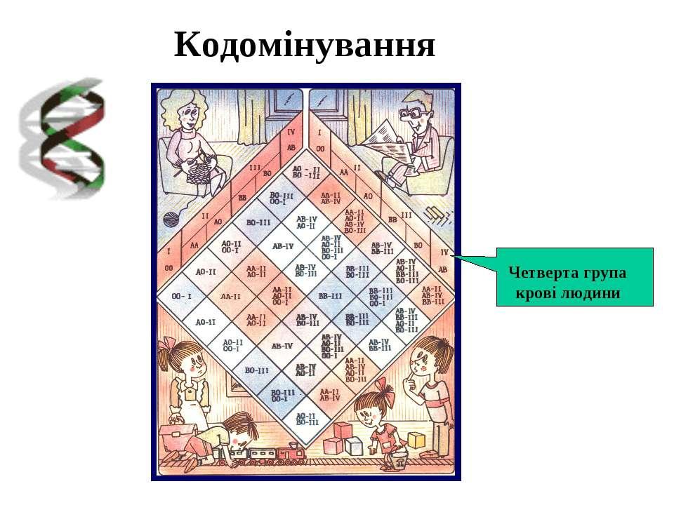 Кодомінування Четверта група крові людини