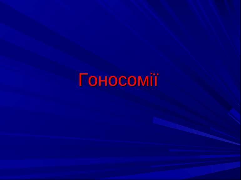 Гоносомії