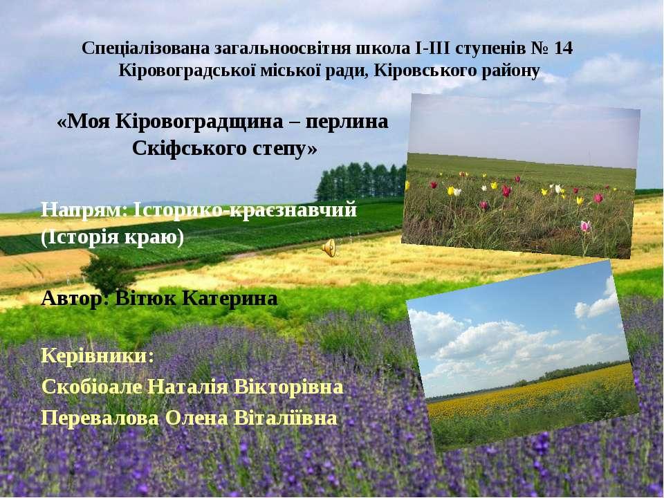 Спеціалізована загальноосвітня школа I-III ступенів № 14 Кіровоградської місь...