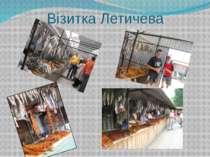 Візитка Летичева