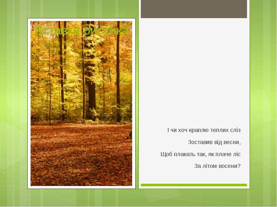 І чи хоч краплю теплих сліз Зоставив від весни, Щоб плакать так, як плаче ліс...